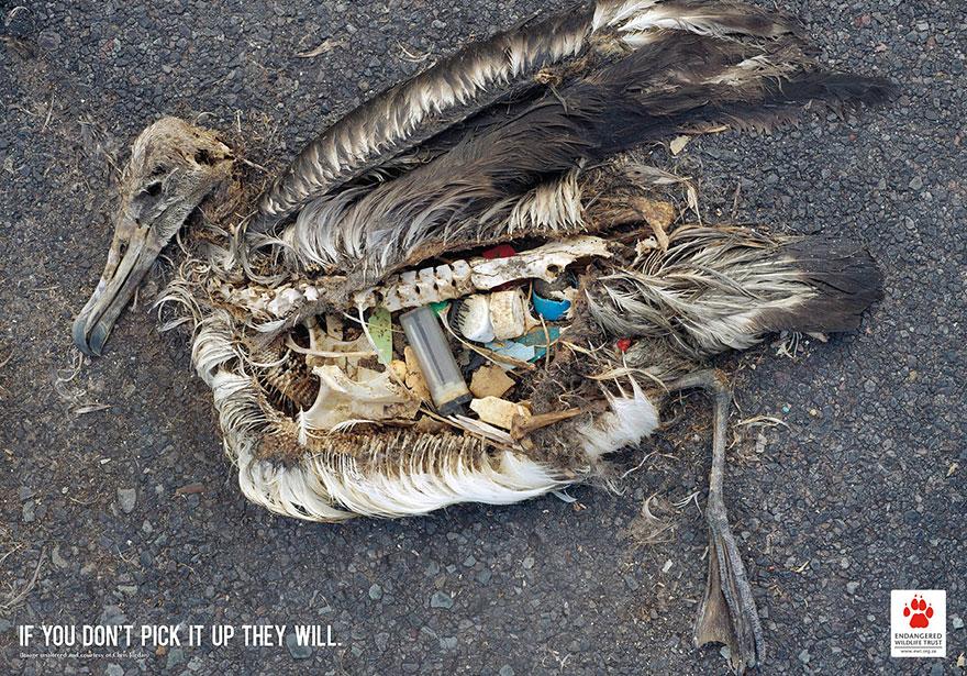 Если мусор не поднимешь ты, его поднимут они