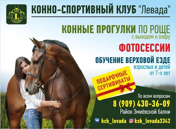 реклама конных прогрулок