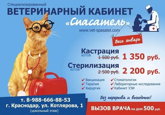 Сеть ветеринарных клиник «Спасатель» реклама