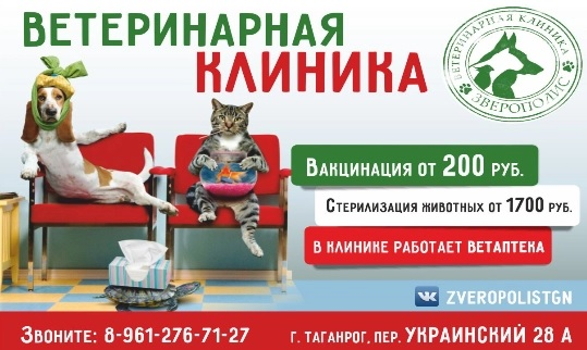 Ветклиника «Зверополис» реклама