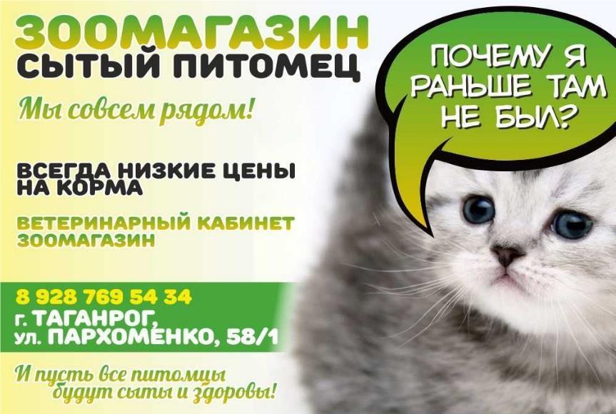 Реклама услуги товары зоотовары пример аудит кампании в яндекс-директ